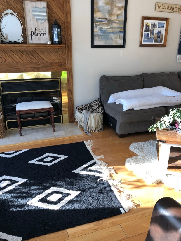 Best Rugs for a Living Space with Kids